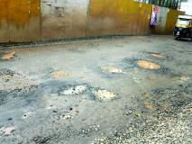 अपघात झालेल्या खड्ड्यांत वृक्षारोपण, देवगड-निपाणी राज्य मार्गावरील घटना