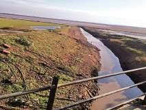 विसापूर तलावातील पाणी संपले; १७ गावात पाणीबाणी