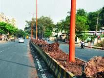 रस्ता दुभाजकांमध्ये कचऱ्याचे ढीग