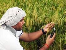 दृष्टिकोन - भारतातील शेतकऱ्यांच्या आत्महत्या 'अन् सेव्ह इंडियन फार्मर्स'