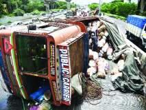 सायन-पनवेल महामार्गावर अपघात, नारळाचा ट्रक कलंडला