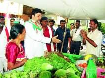 Maharashtra Assembly Election 2019 : भाजपच्या चुकीच्या धोरणांनी बजेट बिघडविले: आशीष देशमुख