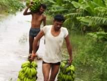 पुरामुळे १३३ गावातील १० हजार ८२० हेक्टरवरील पिकांचे नुकसान