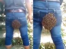बाबो! मधमाश्यांनी तरूणाच्या पृष्ठभागावरच बनवलं घर, व्हिडीओ पाहून मारून घ्याल कपाळावर हात!