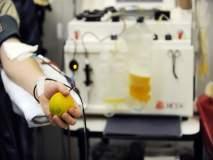 जागतिक रक्तदाता दिन विशेष : प्लेटलेटदानाने अनेकांना जीवदान