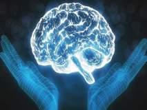 World Mental Health Day : आपला आहार आपल्या मेंदूवर नियंत्रण ठेवतो का?