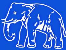 नागपूर-रामटेकमध्ये हत्तीची गती मंदावली