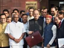 Budget 2019: 'ही' ५ पॅकेज देऊन मतांची 'पेरणी' करणार मोदी सरकार ?
