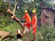 Cyclone Bulbul : पश्चिम बंगालमध्ये 'बुलबुल' चक्रीवादळाचा कहर, प्रचंड नुकसान