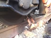 मध्य रेल्वेवर मोठा अपघात टळला ! अंबरनाथ-बदलापूरदरम्यान रेल्वे रुळ तुटला, सुदैवानं जीवितहानी नाही