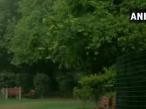 दिल्लीत पावसाची संततधार, उकाड्यापासून जनतेला दिलासा