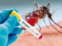 धक्कादायक; सोलापुरात डेंग्यू सदृश्य आजाराने विद्यार्थीनीचा मृत्यू