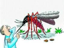 साताऱ्यात मजुराचा डेंग्यूने मृत्यू