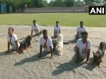 सैन्यातील जवानांसह 'डॉग स्कॉड'नेही केला 'योगा'
