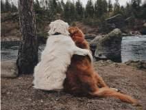 ही दोस्ती तुटायची नाय....एकाला आहे कॅन्सर, दुसरा त्याला 'अशी' देतो साथ!