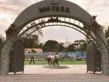भारतातील पहिलं 'डॉग पार्क' पाहिलंत का?