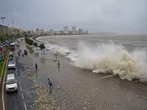 सावध व्हा! समुद्राने फेकला तब्बल 188 मेट्रिक टन कचरा
