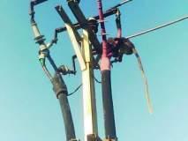 माकडाला वाचविण्यासाठी बंद केला वीज पुरवठा