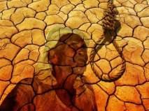 शेतकरी आत्महत्यांचे सत्र सुरूच; अस्मानी संकट, कर्जबाजारीपणावर उपाय सापडेनात