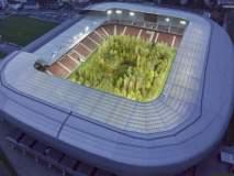 ...म्हणून 'त्यांनी' फुटबॉलच्या स्टेडियममध्ये तयार केलं जंगल!