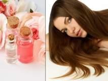 केस गळतीने आहात हैराण?; गुलाबजलाचा असा करा वापर, मग कमाल बघा...