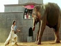हृतिक रोशनने जोधा अकबरच्या सेटवर हत्तीशी मैत्री करण्यासाठी केली होती ही गोष्ट