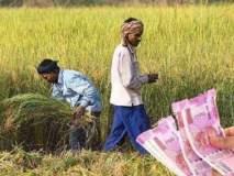अकोला जिल्ह्यात अल्पभूधारक १.२३ लाख शेतकऱ्यांना मिळणार प्रतिमाह ३००० रुपये पेन्शन!