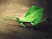Origami Art : आकर्षक, सुंदर आणि आश्चर्यकारक प्रतिकृती; हे फोटो पाहिल्यास तुम्हालाही विश्वास बसणार नाही