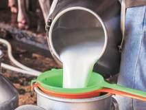 Milk Price Update : 'या' कंपनीचं दूध चार रुपयांनी स्वस्त मिळणार