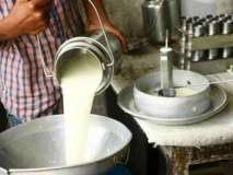 कोल्हापूर पूर: गोकुळचे दूध संकलन बंद, महापुरामुळे निर्णय