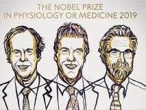 शरीरशास्त्रातील नोबेल पुरस्कार जाहीर; तीन शास्त्रज्ञांच्या नावाची घोषणा
