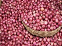 कांद्याचे दर अचानक वाढण्यामागचं कारण काय? कृषी व ग्राहक कल्याण विभागाची लासलगाव बाजार समितीला भेट