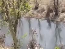 पंचगंगा नदीत सोडले जातेय सांडपाणी
