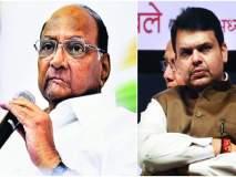 Maharashtra election 2019 :रेवडी पहिलवानाशी कुस्ती खेळत नाही