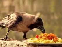 पितरांना तृप्त करण्यासाठी भोजनात अवश्य करा 'हे' पदार्थ