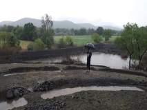 हिंगोली जिल्ह्यात ठिक -ठिकाणी पाऊस; पिकांना जीवदान