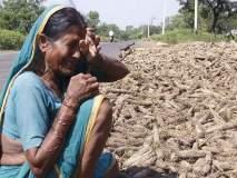 'असं वाटतं मरु तर बरं, पण मरायची नाय...' धाय मोकलून रडली शेतकऱ्याची माय