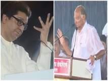 Maharashtra Election 2019; पावसाचं टायमिंग राज ठाकरेंनी चुकवलं अन् पवारांनी साधलं