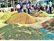 सोयाबीन उत्पादकांची लूट - : इस्लामपुरात बाजार समितीचे सोयीस्कर दुर्लक्ष