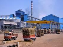 Maharashtra Election 2019 : १०० हून अधिक साखर कारखानदार निवडणूक रिंगणात