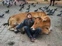 जेव्हा माणसं माणसाच्या प्रेमाला समजू शकत नाहीत, तेव्हा प्राणी 'असं' प्रेम दाखवतात!