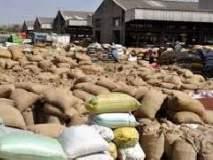 वाशिम जिल्ह्यातील ६ हजार शेतकऱ्यांना नाफेडच्या तूर मोजणीची प्रतिक्षा