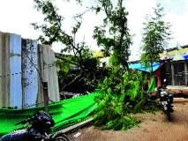 जिल्ह्यात काही ठिकाणी पावसाच्या सरी; झाडही पडले