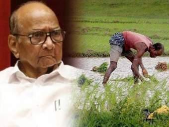'शेतकऱ्यांच्या जखमेवर मीठ चोळलंय, खतांच्या दरवाढीचा निर्णय मागे घ्या' - Marathi News   'Salt rubbed on farmers' wounds, reverse decision on fertilizer price hike', sharad pawar letter to minister on fartilizer and chemical   Latest national News at Lokmat.com