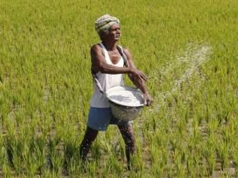 'लॉकडाऊन'मध्ये शेतकऱ्यांच्या आत्महत्या घटल्या; पश्चिम विदर्भाला दिलासा - Marathi News | good news! Decrease in farmer suicides in 'lockdown' | Latest maharashtra News at Lokmat.com
