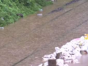मुंबईत रात्रीपासून मुसळधार पाऊस; अनेक सखल भागात साचले पाणी