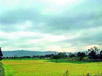 Farmers fear climate change   हवामान बदलाची शेतकऱ्यांना भीती