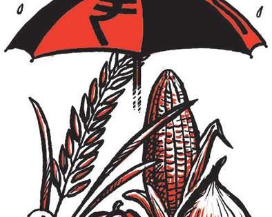 Beed district topped the list in the implementation of Prime Minister's Crop Insurance Scheme | प्रधानमंत्री पीक विमा योजनेच्या अंमलबजावणीत बीड जिल्हा देशात अव्वल