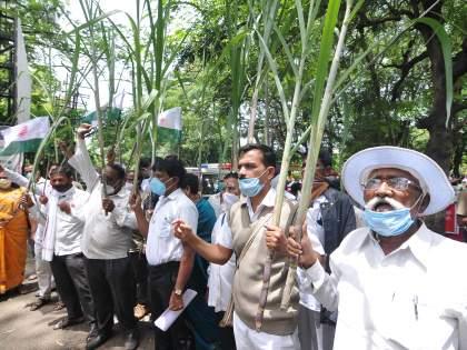 Declare sugarcane FRP early   ऊसाची एफआरपी लवकर जाहीर करा