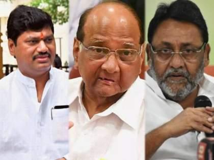 """Nilesh Rane Target NCP Sharad Pawar over Dhananjay Munde & Nawab Malik Allegation   """"जितके गुन्हेगार एका जेलमध्ये नसतील तितके राष्ट्रवादी काँग्रेस या पक्षात आहेत"""""""